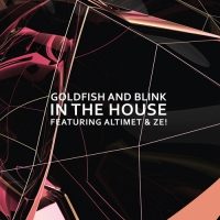Goldfish & Blink - In The House [CD Single]