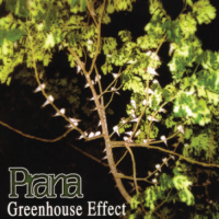 Prana - Greenhouse Effect [MP3]